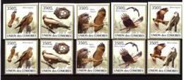 Comoros, 2009. [cm-31] Eagles - Aigles & Rapaces Diurnes