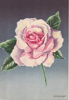 BARRE DAYEZ  1459 T - Cartes Postales