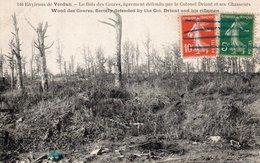 CPA ENVIRONS DE VERDUN - LE BOIS DES CAURES APREMENT DEFENDU PAR LE COLONEL DRIANT ET SES CHASSEURS - Francia