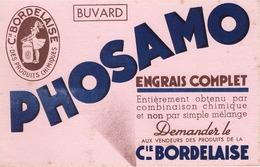 FRANCE - Buvard - Agriculture - Elevage - PHOSAMO - Engrais Complet - Cie Bordelaise - Agriculture