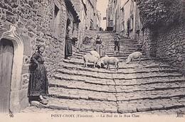 PONT CROIX      LE BAS DE LA RUE CHER .     LES COCHONS - Pont-Croix