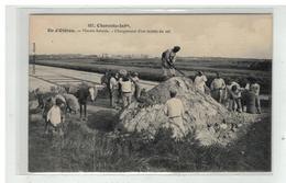 17 ILE D OLERON MARAIS SALANTS CHARGEMENT D UN MULON DE SEL N° 657 EDIT BRAUN - Ile D'Oléron