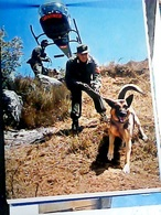 CARABINIERI CINOFILI ELITRASPORTATI ELICOTTERO CANE DOG LUPO PASTORE TEDESCO  N1975  HO8066 - Regimente