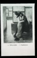 L'Architecture Par Albert Guillaume (Scène Mondaine &  Plan D' Architecte) - Coupure De Presse  (illustration) De 1903 - Architecture