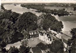 D41  MUIDES- SUR- LOIRE  Château De Colliers   ..... - France