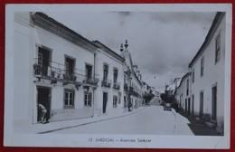 Postcard Of The    Sardoal   /  Avenida Salazar   ( Lote N º 1111 ) - Santarem