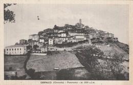 GERFALCO - PANORAMA - Grosseto