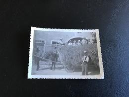 PHOTO - 1933 - JONGUES Les Foins (Doubs) - Métiers