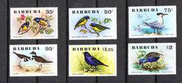 Barbuda  - 1976. Rara Serie Completa Di Passeri E Sterna Reale.Rare Complete Set Of Sparrows And Royal Tern. MNH - Moineaux