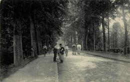 Petite Espinette Chemin De Waterloo - Uccle - Ukkel