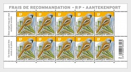 Belgio Belgium (2019) Uccelli Birds Oiseaux (Bearded Reedling - Panurus Biarmicus); Full Sheet (MNH) - Moineaux