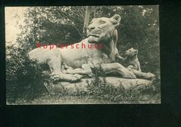 AK Mondorf Les Bains, La Grande Lionne Et Ses Liongeaux, Edit. P. C. Schoren Gel. 1908 - Mondorf-les-Bains