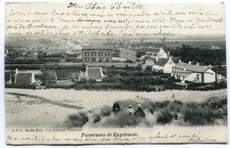 CPA - Carte Postale - France - Zuydcoote - Panorama De Zuydcoote - 1904 (SVM12238) - Otros Municipios