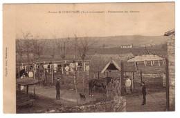CORNUSSON Près De CAYLUS -  Présentation Des Chevaux - France