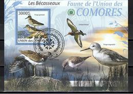 Bécasseau / Bécasseaux / BF Oblitéré / Union Des Comores - Oiseaux