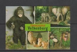 VALKENBURG-SPROOKJESBOS-ZOO-DIERENTUIN-DIEREN-ANIMAUX-NIET VERSTUURD-MOOI-ZIE 2 SCANS! - Valkenburg