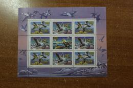 Russia 1993 Net Small Sheet Ducks - Ongebruikt