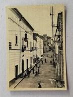 Cartolina Illustrata Sessa Aurunca-Borgo Inferiore Del Corso Lucillo - Otras Ciudades