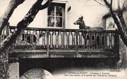 CP 27 Eure Lyons-La-Forêt Chasse à Courre - Cerf Aux Abois à La Porte De L'étude De Notaire - Lyons-la-Forêt