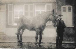 Roux Souvret Jean Baptiste Tilmant Dit Bâtisse Maurico Né à Presles En 1879 Et Son Cheval Carte Photo - Courcelles