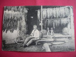 ALLE- Sur-SEMOIS   :   Le Vieux Planteur De Tabac - Vresse-sur-Semois