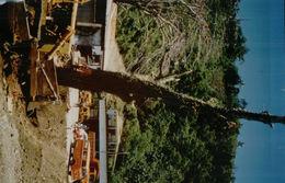 1820    PHOTO   T P   FUTUNA  1983   NON    ECRITE - Wallis Et Futuna