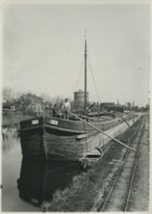 Péniche Sur Un Canal Dans Le Nord De La France Ancienne Photo 1930 - Boats