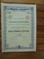 BELGIQUE - BRUXELLES 1899 - LOT DE 5 TITRES -  CIE DES OLENAPHTES - ACTION DE DIVIDENDE DE 250 FRS - Zonder Classificatie