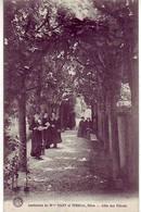 (21). Dijon. Institution Nicey Et Terrial. Allée Des Tilleuls - Dijon
