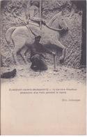 59 - ELINCOURT - SAINTE-MARGUERITE - LA CARRIERE CHAUFFOUR - OEUVRE D'UN POILU PENDANT SON REPOS - - France