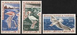 1961 Mauritania Birds Set (** / MNH / UMM) - Unclassified