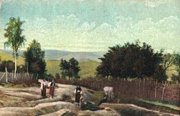 CÂMPULUNG ( MUSCEL / ARGES ) : DRUMUL Spre BUGHEA DE JOS ~ 1925 - '928 (ae598) - Roumanie