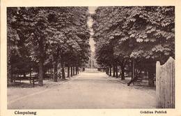 CÂMPULUNG ( MUSCEL / ARGES ) : GRADINA PUBLICA ~ 1925 - '930 (ae599) - Roumanie