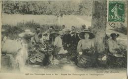 Vidauban- Vendanges Dans Le Var- ** Belle Cpa PAS COURANTE ** Ed. Guende N° 1338 - Vidauban