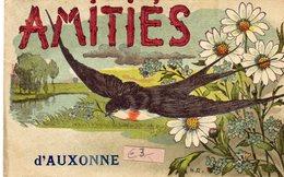AUXONNE (21 Côte D'or) FANTAISIE-AMITIES-HIRONDELLE - Auxonne