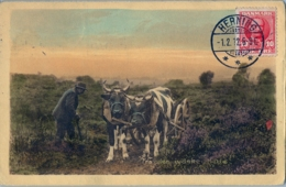 1912 , DINAMARCA , T.P. CIRCULADA , HERNING - ROTTERDAM , CARRUAJE , CARRO - Lettres & Documents