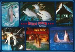Heide-Park Soltau, Germany - Dolphin - Sonstige