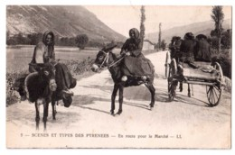 Scènes Et Types Des Pyrénées - En Route Pour Le Marché - édit. LL. Lévy 5 + Verso - Autres Communes