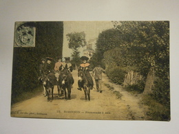Robinson Promenade à ânes,Haut De Seine 92,voyagée Année 1907,très Bel état,colorisée - Autres Communes