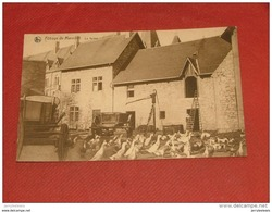 ANHEE -    Abbaye De Maredret - La Ferme - Anhée
