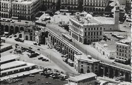 ALGERIE - ALGER - GUERRE D'ALGÉRIE - 1954 - Algiers