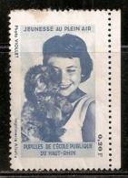 JEUNESSE AU PLEIN AIR   OBLITERE - Commemorative Labels