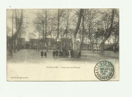 66 - ILLE SUR TET - Promenade Des Platanes Animée Bon état - France