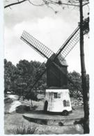 """Knokke-Zoute - """"Vieux Moulin"""" - Knokke"""