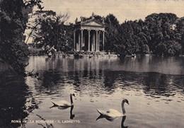 Italie, Roma, Villa Borghese, Il Laghetto - Parks & Gardens