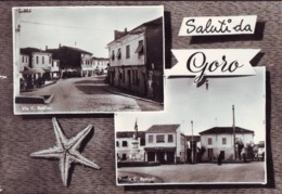 Saluti Da Goro FE   Vedutine  Anni '50 - Autres Villes