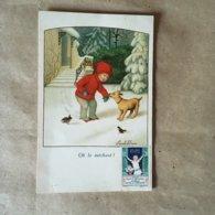 Carte Postale De Pauli Ebner AR 1437 - Ebner, Pauli