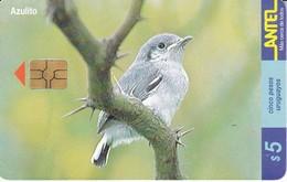 Nº 126 (CHIP NEGRO) TARJETA DE UN PAJARO DE URUGUAY AZULITO (BIRD) - Uruguay