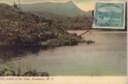 DOMINICA , T.P. NO CIRCULADA , THE BANKS OF THE LAKE - Dominique