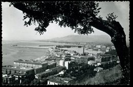 Malaga Vista Del Puerto Desde Gibralfaro Alamos - Málaga